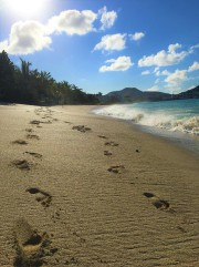 beach8 (2)